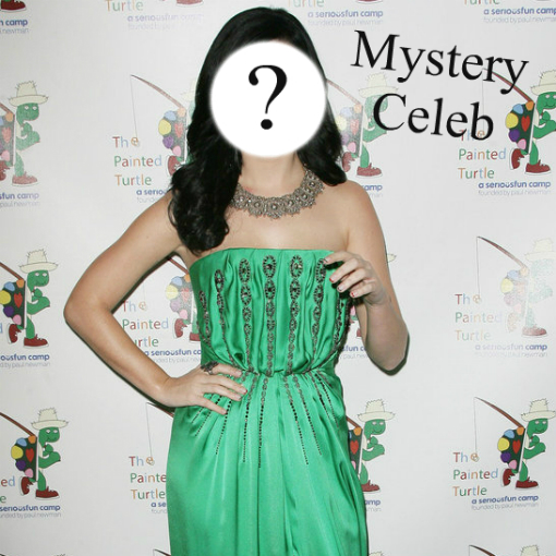 Mystery Celeb 11