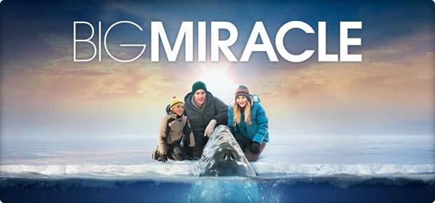 Big Miracle Scenery Contest