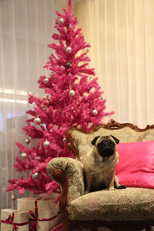 Milton_Christmas