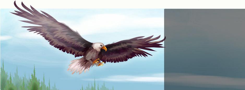 http://www.sdcdn.com/i/campaign/endangered-animals/makeover/16_bg.jpg?7051