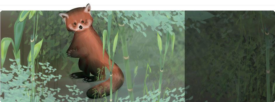 http://www.sdcdn.com/i/campaign/endangered-animals/makeover/7_bg.jpg?5802