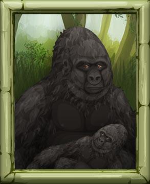 http://www.sdcdn.com/i/campaign/endangered-animals/nr1_framedpicture.jpg?5364